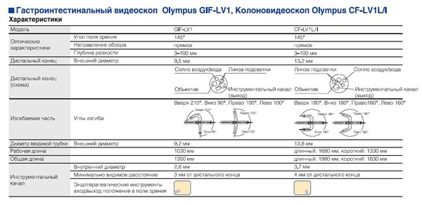 GIF CF.JPG